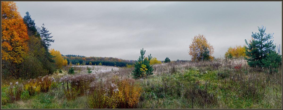 """фото """"Осеннее многоцветье"""" метки: пейзаж, панорама, осень"""