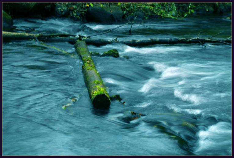"""фото """"Осенняя река"""" метки: пейзаж, вода, осень"""