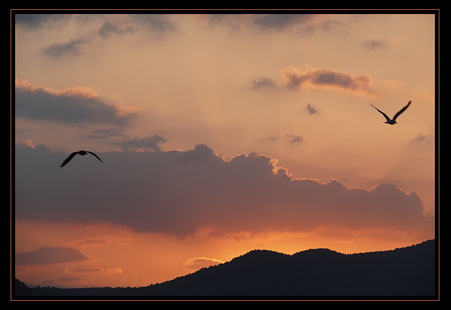 "photo ""Two birds"" tags: landscape, sunset"