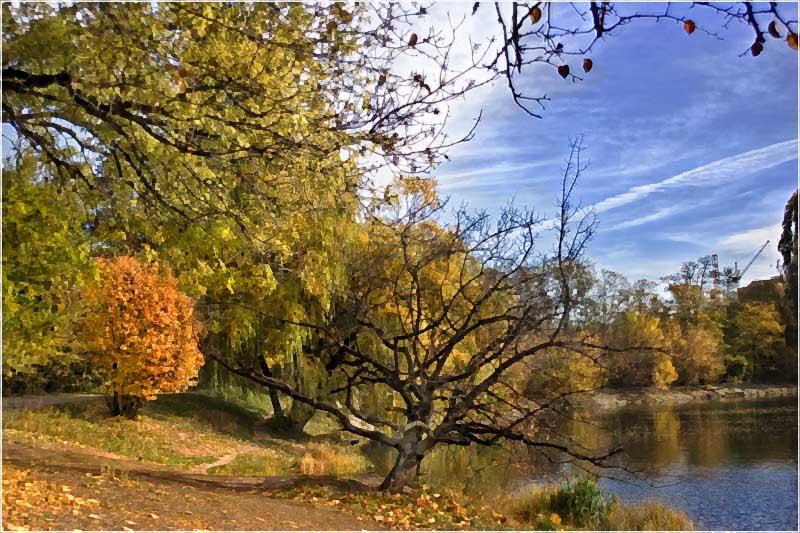 """фото """"Городской пруд"""" метки: пейзаж, осень"""