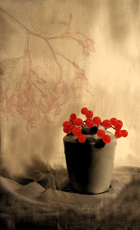 """photo """"***"""" tags: montage, still life,"""