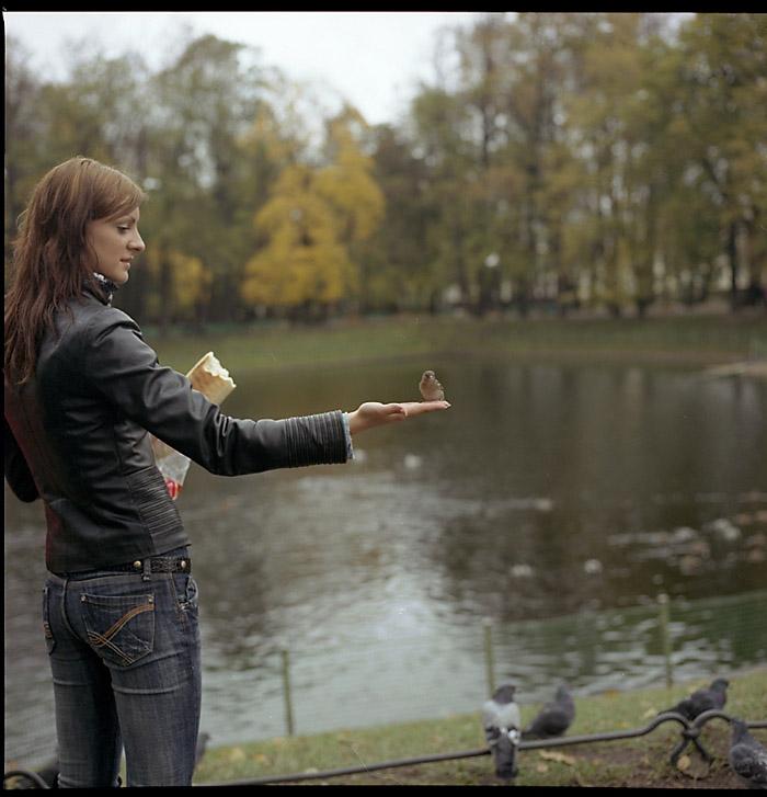 """фото """"летний сад"""" метки: пейзаж, осень"""