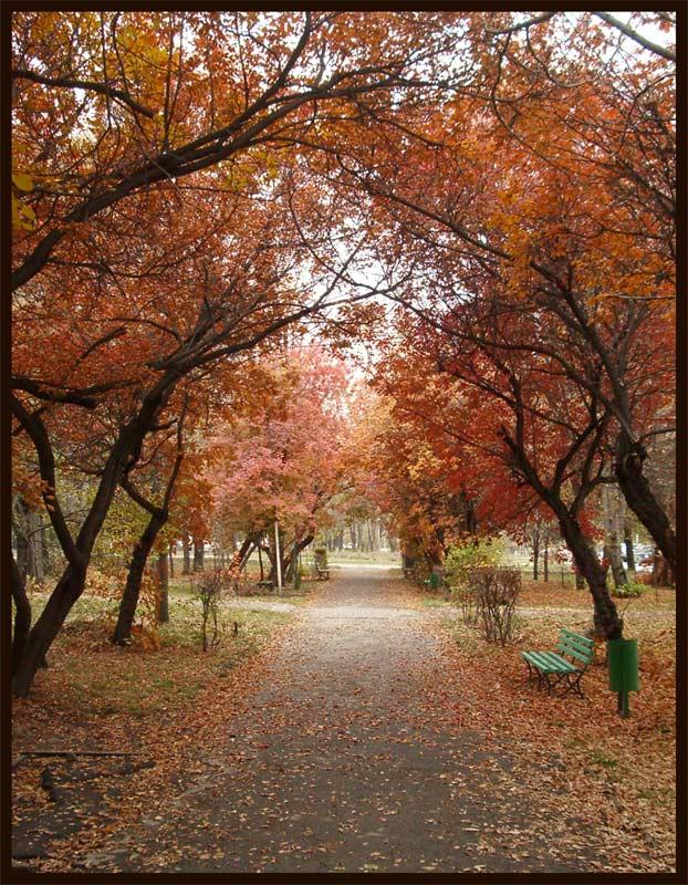 "photo ""Autumn in Almaty"" tags: landscape, autumn"