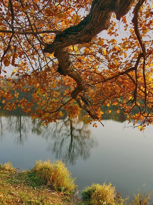 "photo ""***"" tags: landscape, autumn, water"