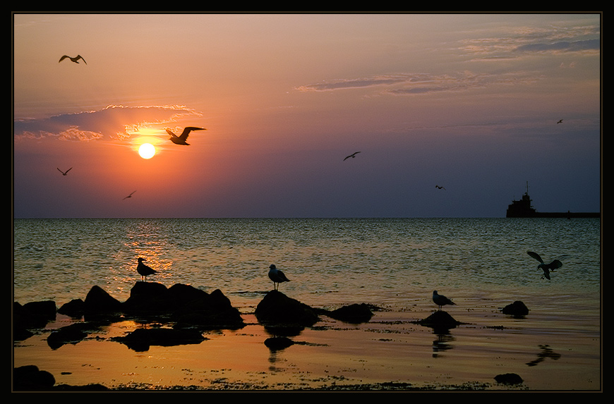 "photo ""Eleven companions of uprise"" tags: landscape, sunset"