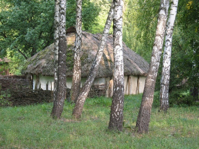 "photo ""***"" tags: architecture, landscape, forest"
