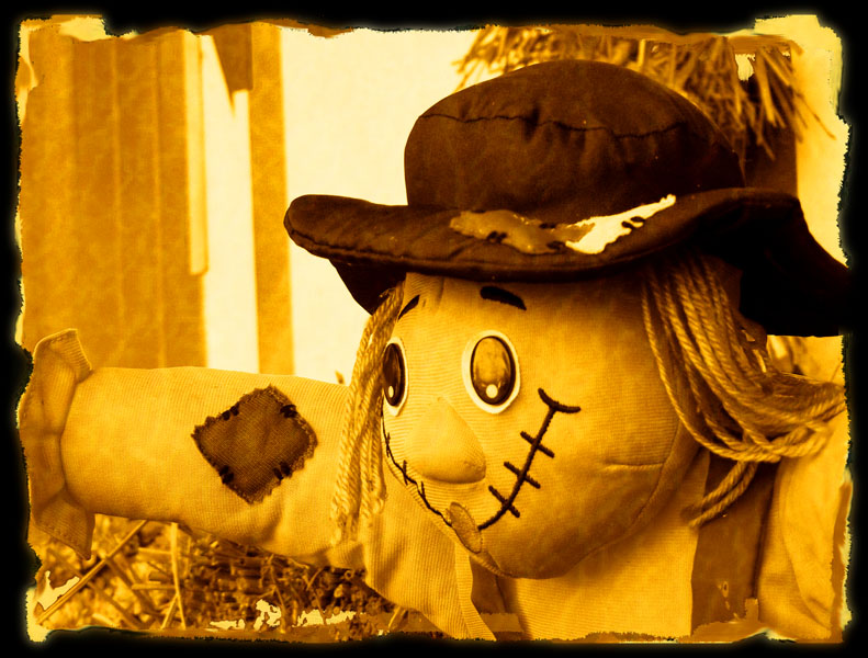 "photo ""Scarecrow / Пугало"" tags: reporting,"