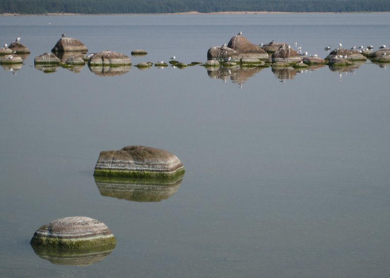 """photo """"Old stones"""" tags: landscape, nature, water"""