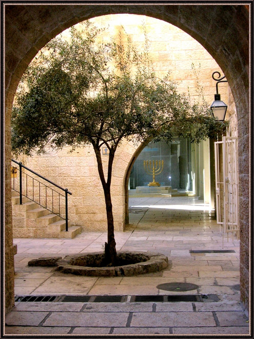 "фото ""Мой Иерусалим"" метки: ,"