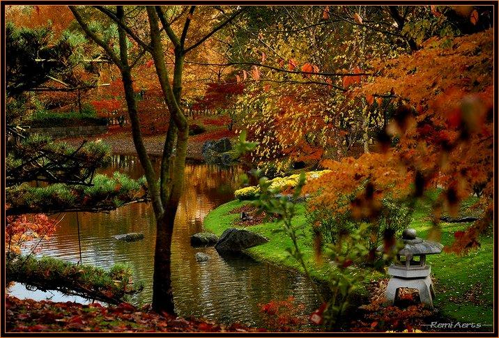 """фото """"Japanese garden"""" метки: пейзаж, природа, вода, цветы"""