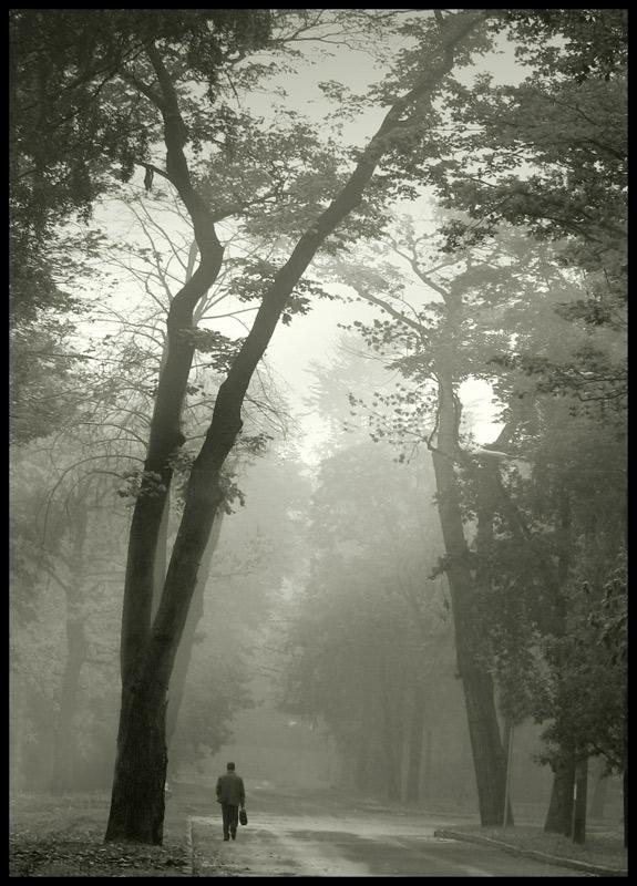 """photo """"Leaving..."""" tags: landscape, genre, autumn"""