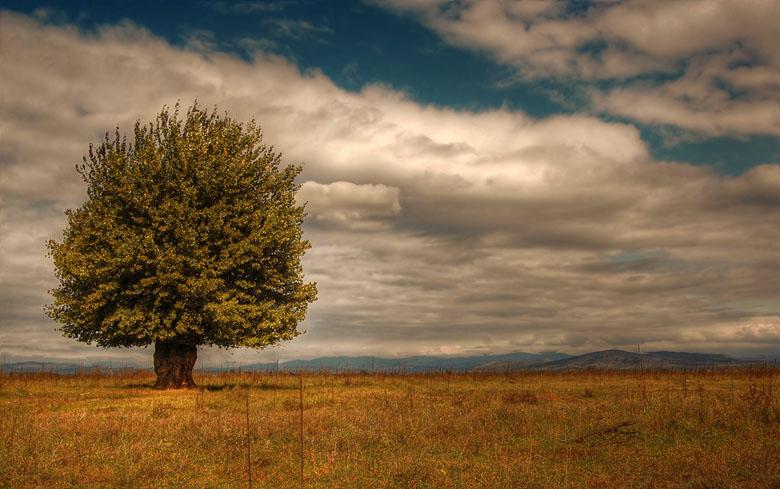 """фото """"alone with the clouds....."""" метки: пейзаж,"""