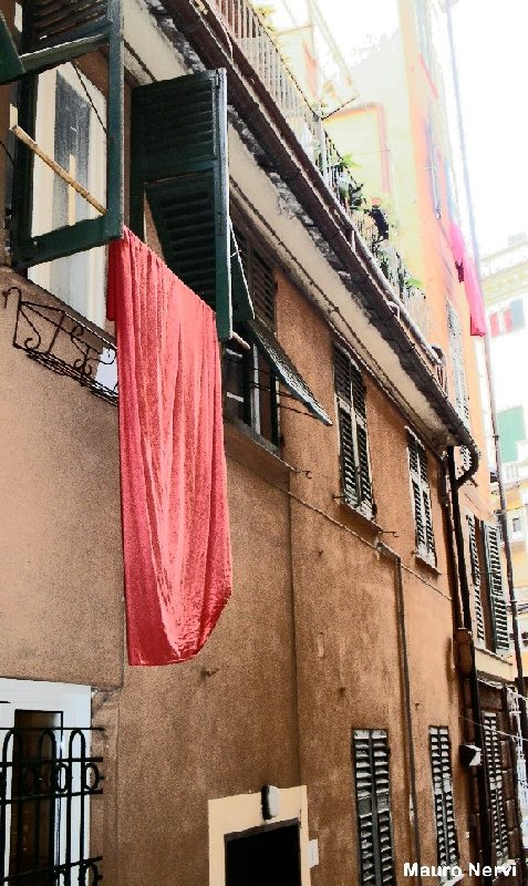 "photo ""old Genoa, old memories"" tags: city,"