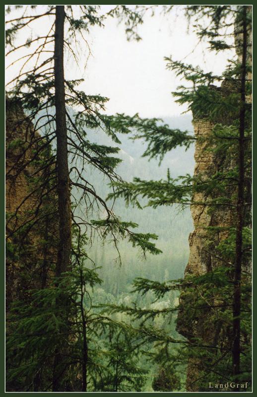 """фото """"На Ленских Столбах"""" метки: пейзаж, горы"""