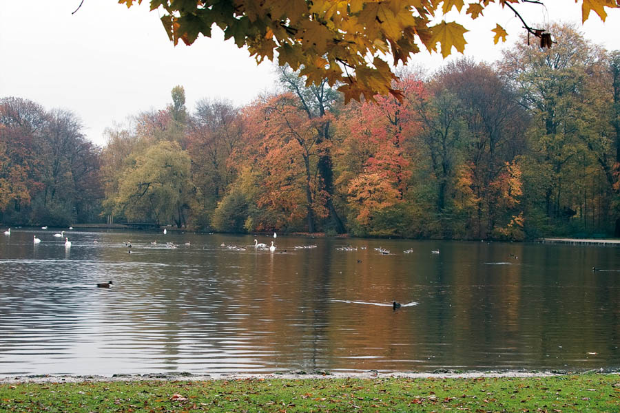 "photo ""English Garden"" tags: landscape, autumn, water"