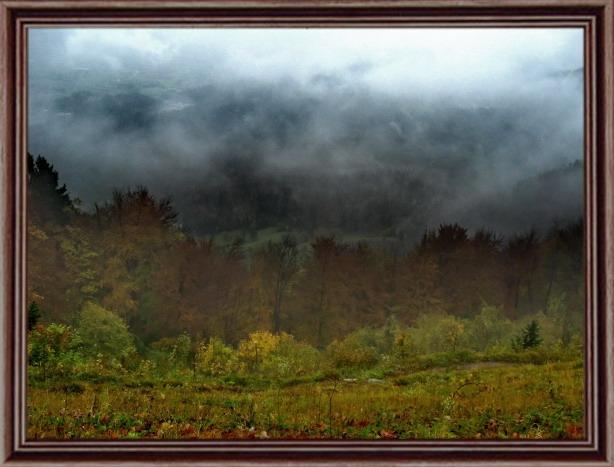 "photo ""Misty autumn"" tags: landscape, forest"