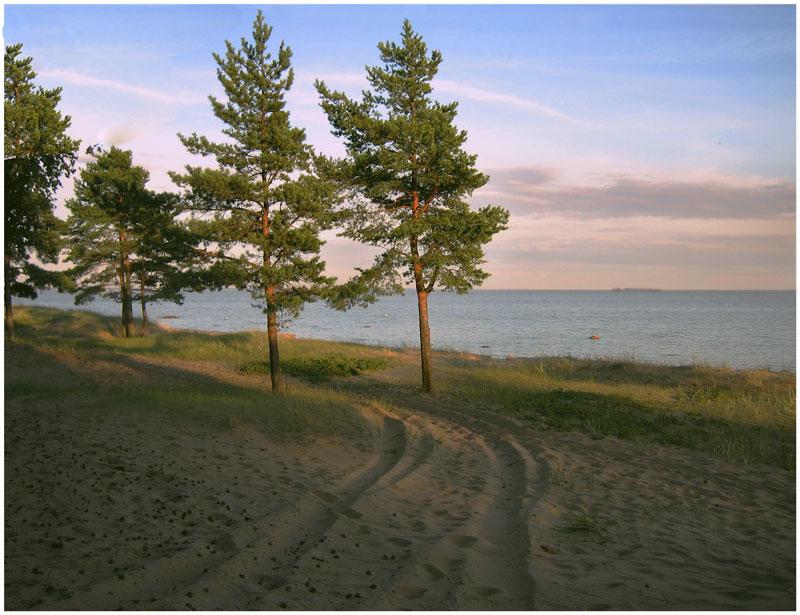 """фото """"Финский залив. На закате дня"""" метки: пейзаж, вода, лето"""