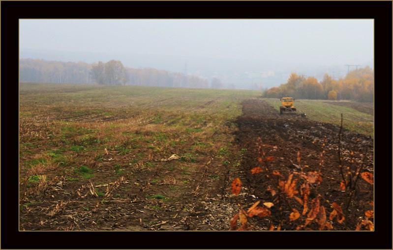 """фото """"Будет урожай."""" метки: пейзаж, осень"""