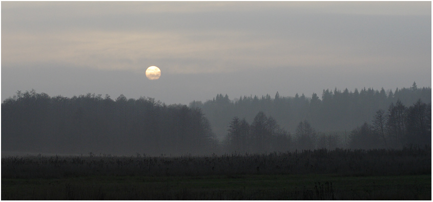 "фото ""Закат в тумане"" метки: пейзаж, закат, осень"