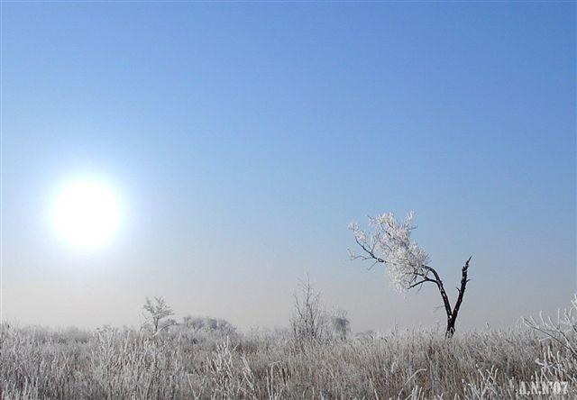 """фото """"... одиночество  ..."""" метки: пейзаж, зима"""