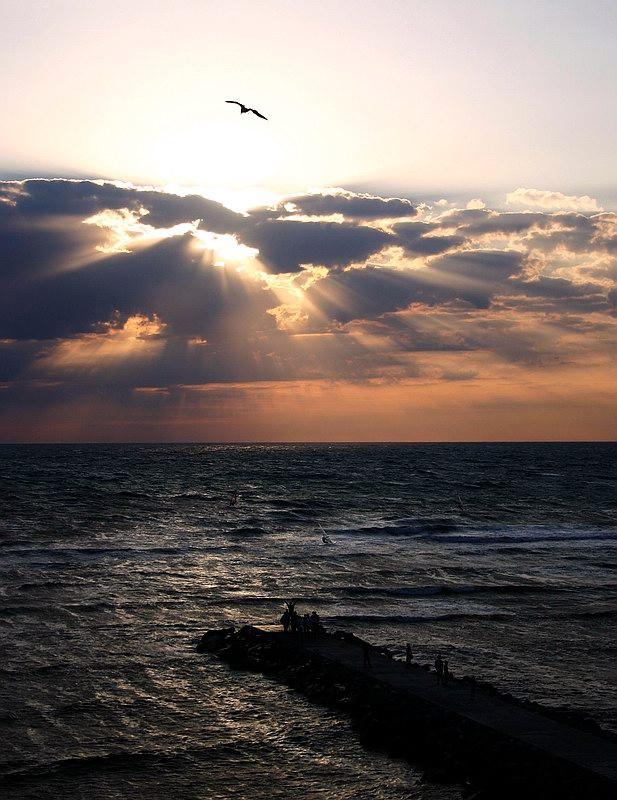 """фото """"Before a storm"""" метки: ,"""