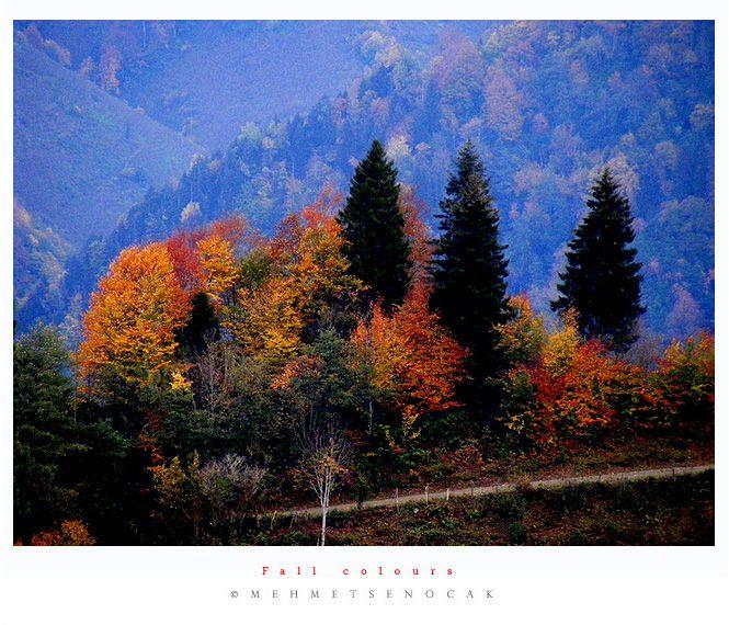 """photo """"Fall Colours"""" tags: landscape, autumn"""