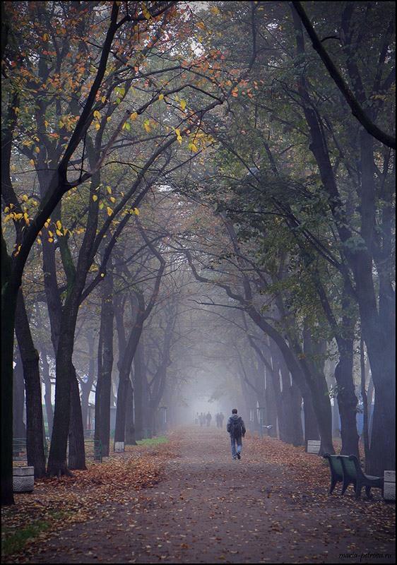 """фото """"Туманная"""" метки: пейзаж,"""