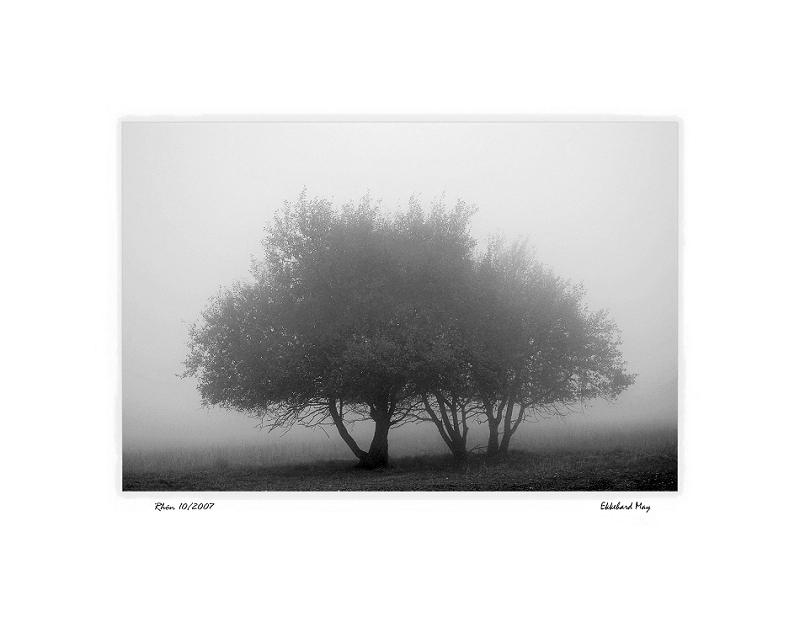 """фото """"communio"""" метки: пейзаж, черно-белые,"""