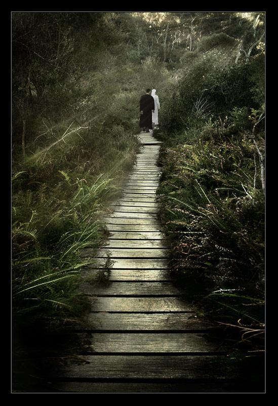 "фото ""Garden of dreams come true"" метки: пейзаж, лес"