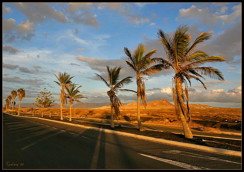 """фото """"Palm Road"""" метки: пейзаж, путешествия, Европа, лето"""