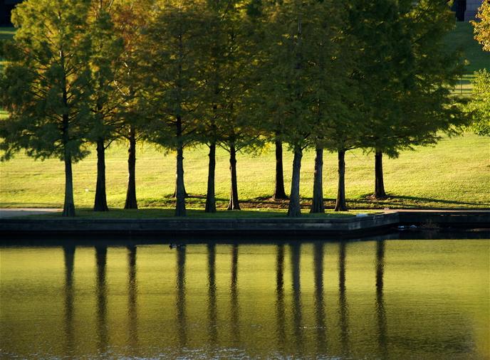 """фото """"green"""" метки: пейзаж, осень"""