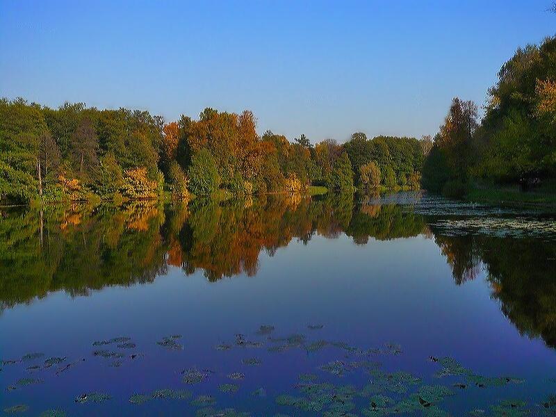 """фото """"Колдовская Прелесть"""" метки: пейзаж, осень"""