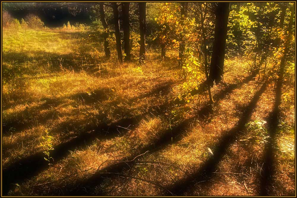 "photo ""Warm light of autumn"" tags: landscape, autumn"