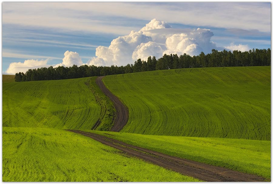 "фото ""Всходы"" метки: пейзаж, облака"