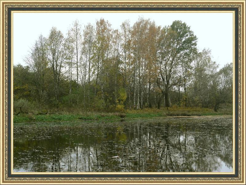 """фото """"А на том берегу..."""" метки: пейзаж, осень"""
