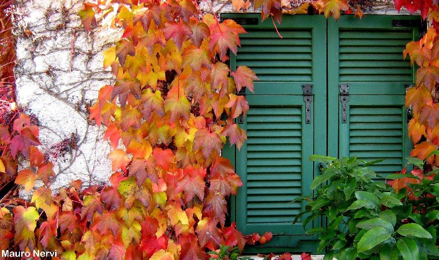 "photo ""colours of season"" tags: landscape, autumn"