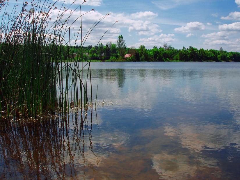 """фото """"С настроением"""" метки: пейзаж, вода, лето"""