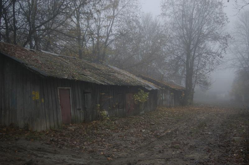 """фото """"Сарай."""" метки: пейзаж, осень"""
