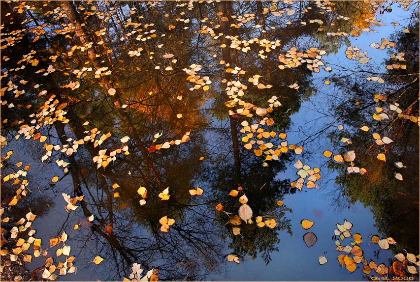 "photo ""Autumn mirror"" tags: landscape,"