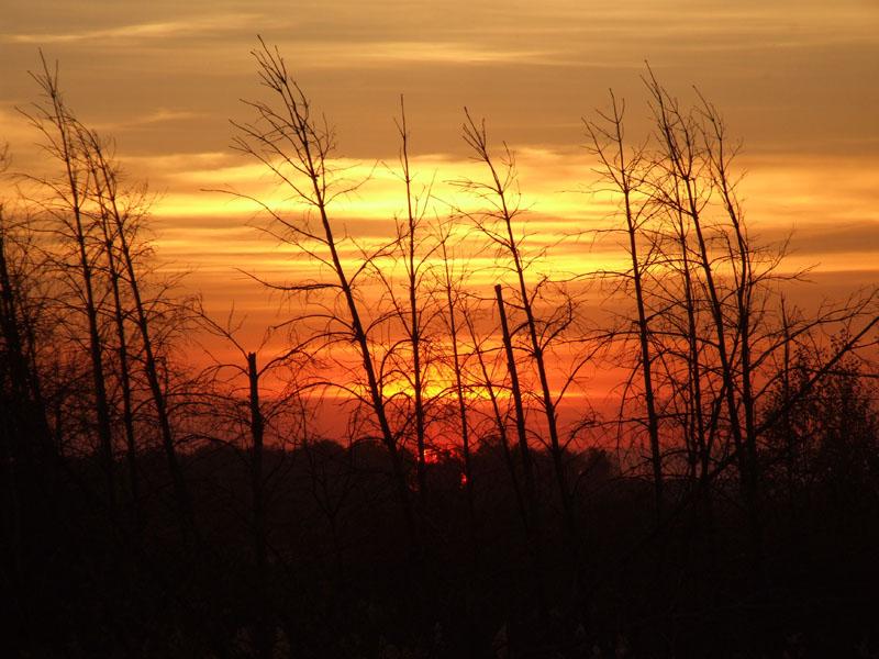"""фото """"предчувствие"""" метки: пейзаж, закат"""