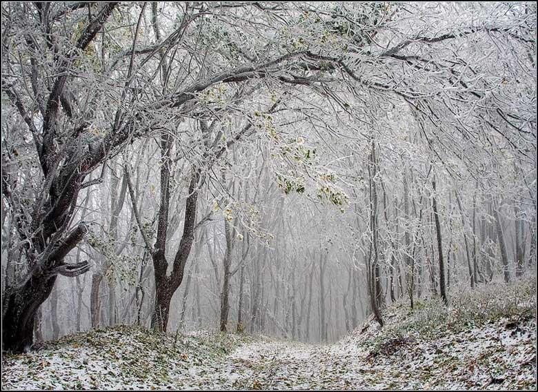 """фото """"Капризы осени"""" метки: пейзаж, осень"""