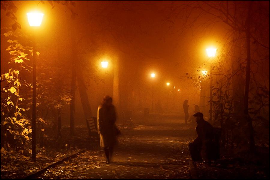 "фото ""Ночь и туман"" метки: пейзаж, жанр, осень"