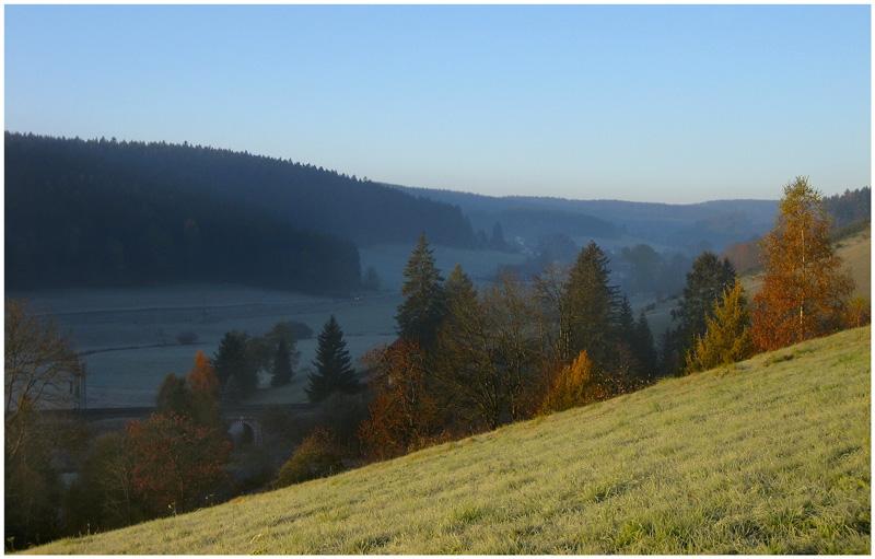"""фото """"Silence"""" метки: пейзаж, лес, осень"""