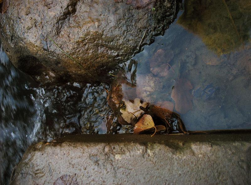 """фото """"осень в воде"""" метки: пейзаж, разное,"""