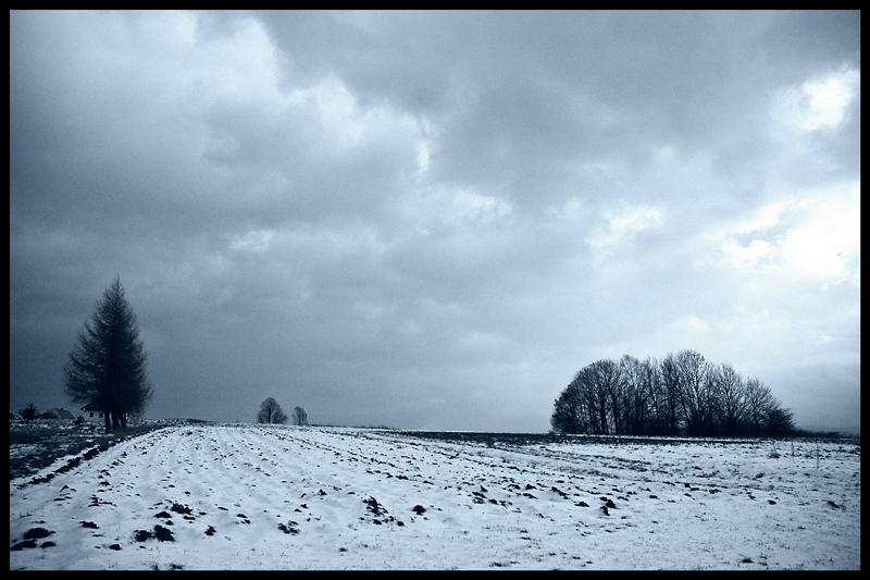 "photo ""...breathe..."" tags: landscape, black&white,"