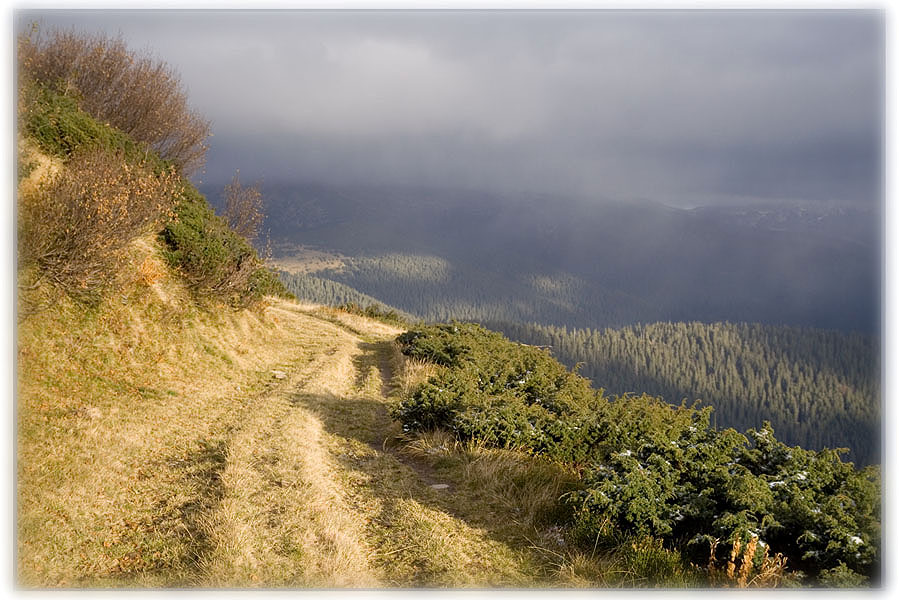 """фото """"light road"""" метки: пейзаж, горы, осень"""