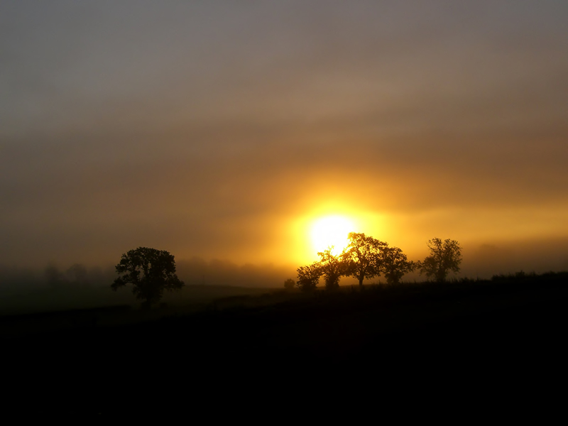"photo ""Misty Sunrise"" tags: landscape, autumn, sunset"