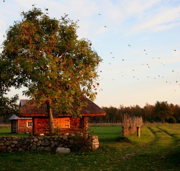 """photo """"Saaremaa 3"""" tags: landscape,"""