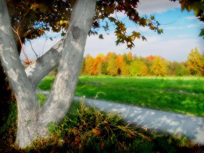 """фото """"Autumn colors"""" метки: пейзаж,"""