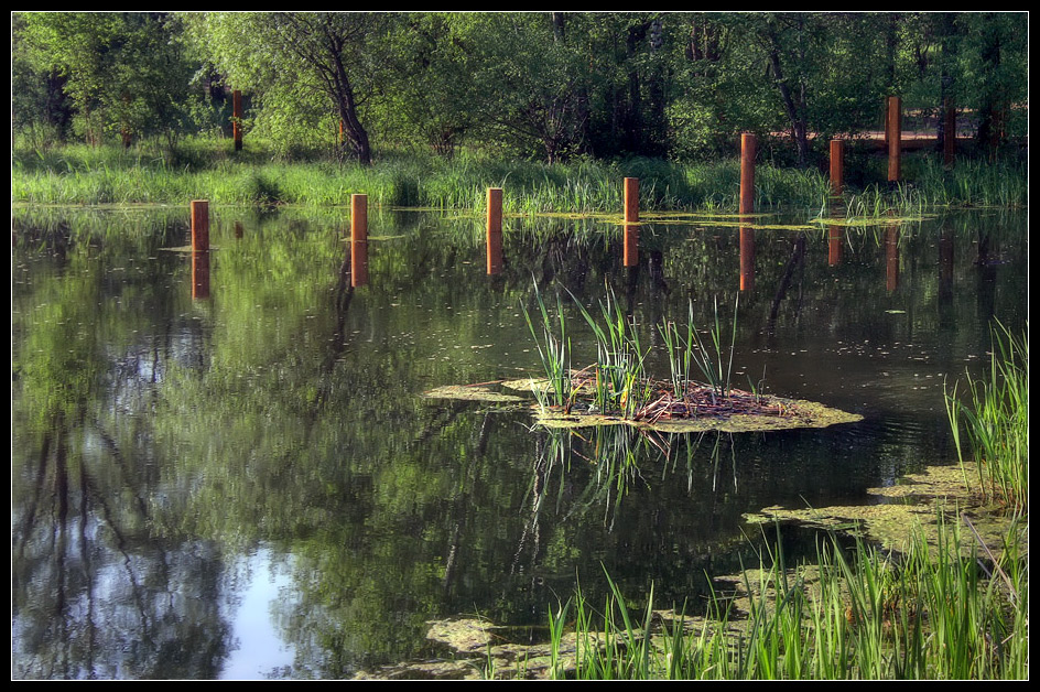 "photo ""pond"" tags: landscape, summer, water"